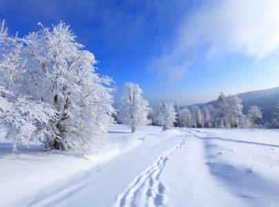 Мы делаем зиму приятной